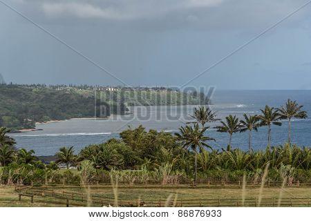 The coast along Kilauea Point, Kauai
