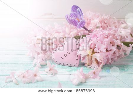 Postcard With Fresh Flowers Hyacynths, Crocus  And Decorative Heart