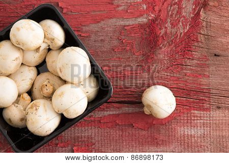 Punnet Of Fresh White Button Mushrooms