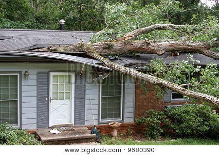Oak Impales House