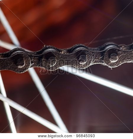 dirty bicycle chain on the background of the spokes