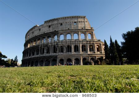 Colosseum And Green Lawn