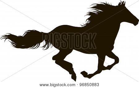 A horse runs