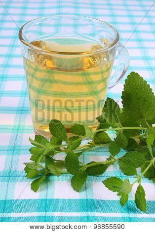 Fresh Lemon Balm And Glass Of Herbal Drink On Tablecloth