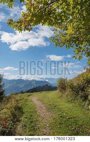 Hillside Walkway At Grisons, Swiss Landscape