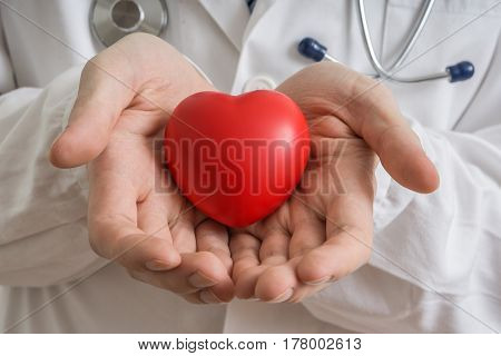 Heart Transplantation Concept. Doctor Holds Red Heart Model In H