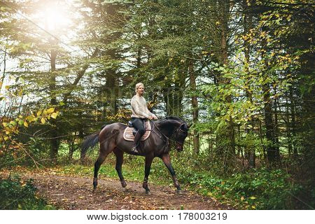 Woman Training On A Horse In The Park