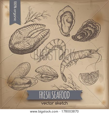Vintage fish steak, oyster and mytilus template placed on old paper background. Great for markets, grocery stores, organic shops, food label design.