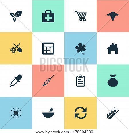 Vector Illustration Set Of Simple Agricultural Icons. Elements Refresh, Sack, Medical Kit And Other Synonyms Leaves, Calculator And Farm.