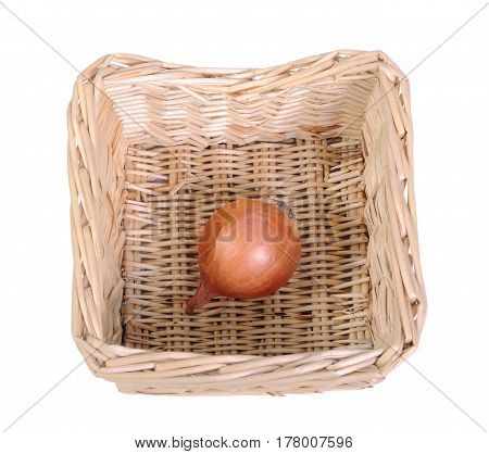 One bulb in a basket on white background