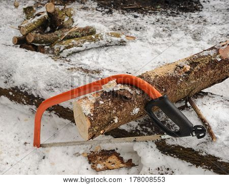 Preparation of firewood for a fire in the winter