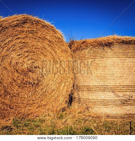 autumn landscape with haystack at the farm image