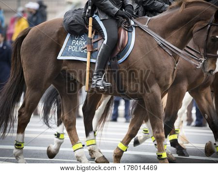 45th Presidential Inauguration, Donald Trump: Mounted U.S. Park Police officers on horseback take part in the Presidential Parade on Pennsylvania Ave in NW, WASHINGTON DC - JAN 20 2017