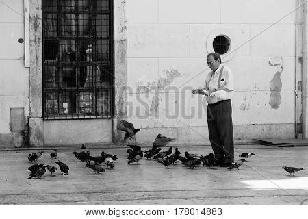 a man feeding pigeons in Lisbon, Portugal, 3 th august 2015