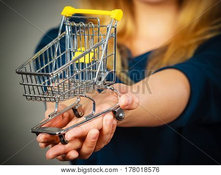 Woman Hand Holding Small Tiny Shopping Cart