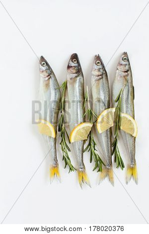 saltwater fish smelt marinated with rosemary and lemon on a white background cooking daylight vertical shot
