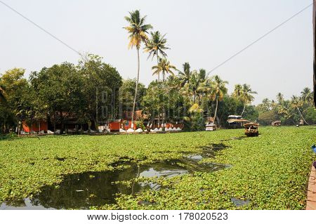 Alleppey, India - 21 January 2015: Boats cruising on a canal of the backwaters near Alleppey