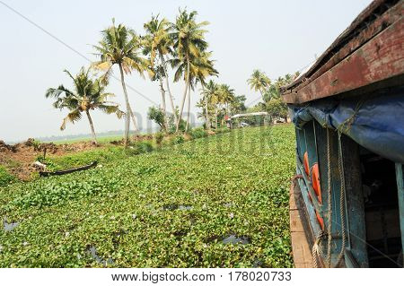 Alleppey, India - 20 January 2015: Boat cruising on a canal of the backwaters near Alleppey, India
