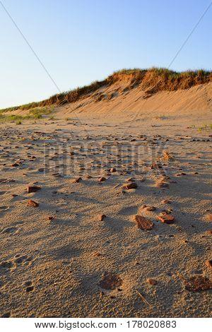 Golden Sunlight Lighting Rocky Beach and Sand Dunes