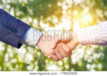 Shaking Hands After Agreement .