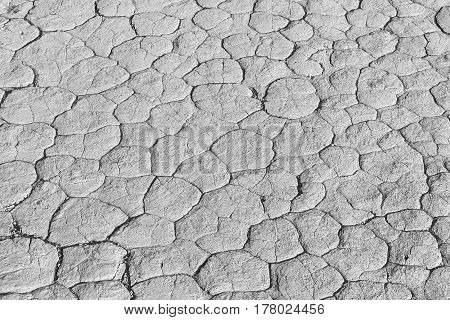 Monochrome clay texture of drying prism desiccation cracks in ground. Cracked and dried mud dirt background texture in the desert.