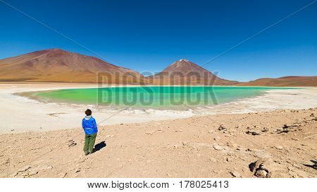 Green Lagoon And Licancabur Volcano On The Bolivian Andes