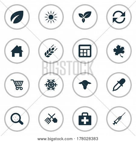 Vector Illustration Set Of Simple Agricultural Icons. Elements Ranch Home, Sunshine, Buffalo And Other Synonyms Virus, Math And Grain.