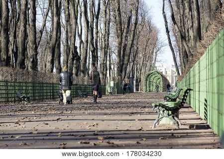 people in the Park walking along the path trees walkway spring bench blue sky Russia