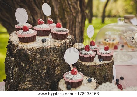 Beautiful festive composition of cakes on stumps