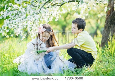 Girl And Boy With A Goat Sitting In The Grass In A Lush Apple Orchard