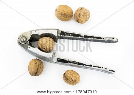 Old Nut Cracker Isolated On White Background With Nuts