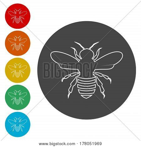 Bee icon. Bee flat symbol. Bee art illustration
