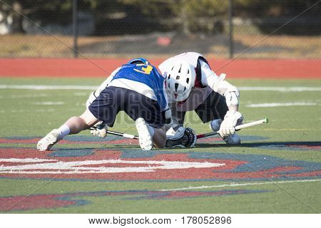 Two lacrosse athletes face off in the middle of the field