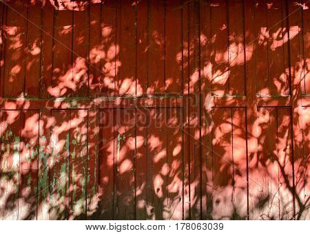 Tree Leaves Shadow On Red Wall Background