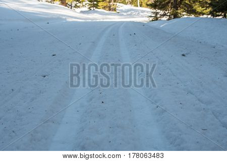 Looking Down Cross Country Skiing Tracks in the shadows