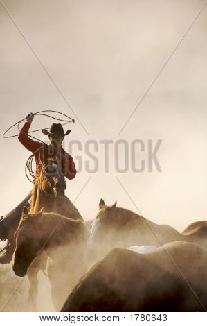 Roping The Horses