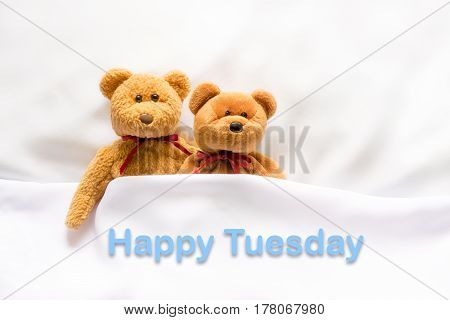 Teddy Bear lying in the white bed with message