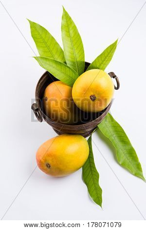 King of fruits; Alphonso yellow Mango fruit duo with stems and green leaf isolated on white background, a product of Konkan from Maharashtra - India