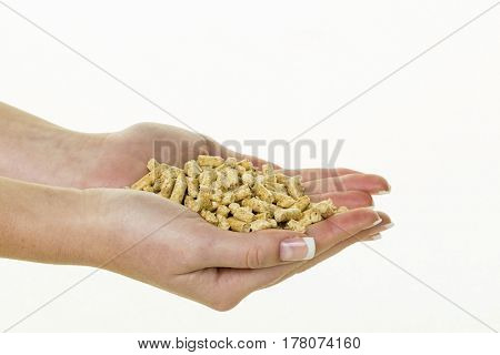 hand with pellets as old natie energy poster