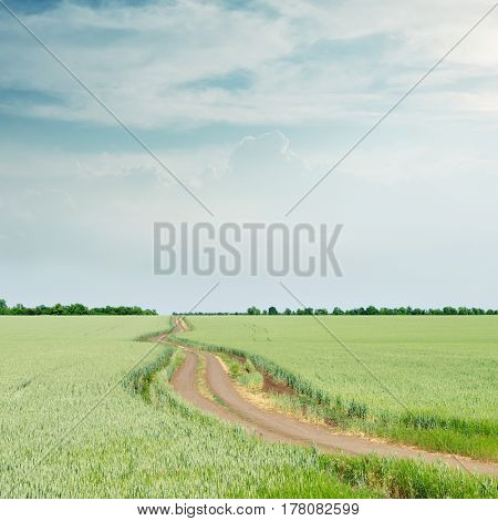 rural road in green field and clouds in blue sky