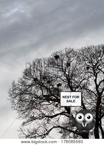 Comical bird estate agent advertising nest for sale