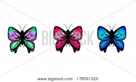 Set of multi-colored neon butterflies. A miracle of nature.
