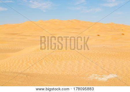 In Oman Old Desert    Sand Dune