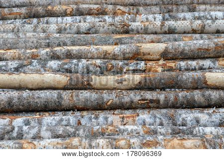 wall, wood, texture, brick, stone, tree, woodpile, log wall