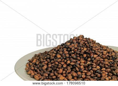 Closed up Roasted Barley on White Plate Isolated on White Background, Mugi Cha, Roasted Barley Tea