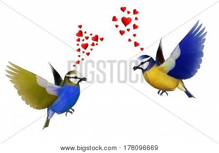 Love at first sight, two birds with inverted colors fall in love with a crush.