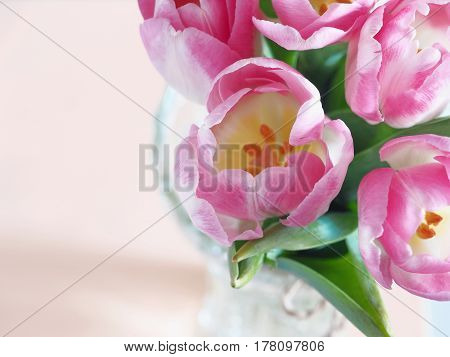 Flower background, blur. Greeting card. Bouquet of purple tulips in a vase. Selective focus on the front.Top view. Copy space for your text.