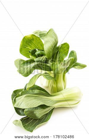 Bunch Of Fresh Green Baby Bok Choy, On White Background