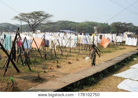 Lady Spreading Linen To Dry At A Laundry Of Fort Cochin