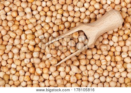wooden scoop on dry chickpea as background. Closeup uncooked chickpea top view. Vegan healthy nutrition